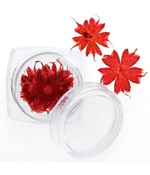 Сухоцветы для ногтей №100