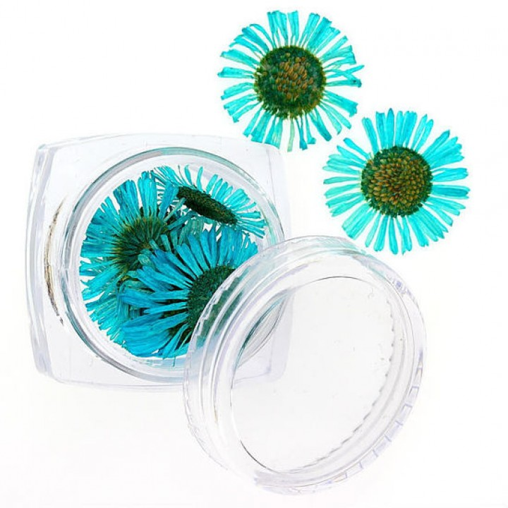 Сухоцветы для украшения и дизайна ногтей №104