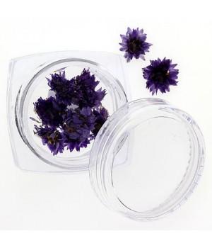 Сухоцветы для ногтей №108
