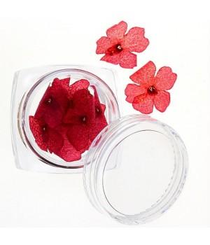 Сухоцветы для ногтей №30