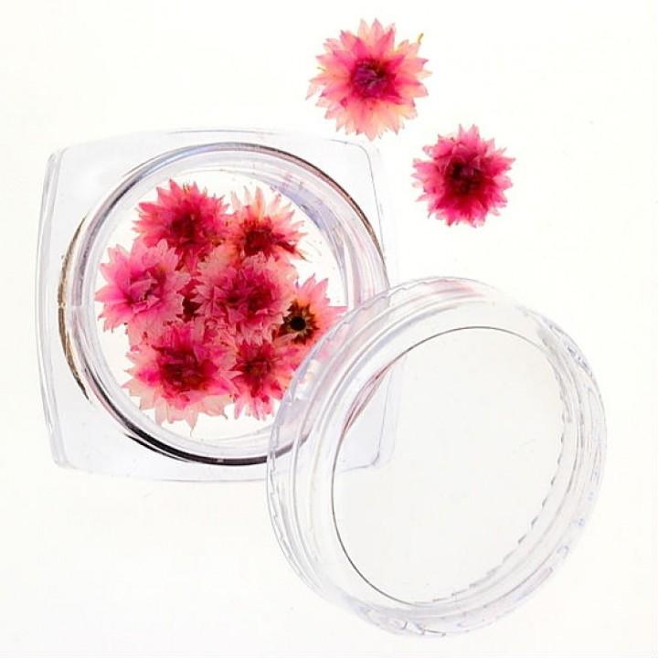 Сухоцветы для украшения и дизайна ногтей №31