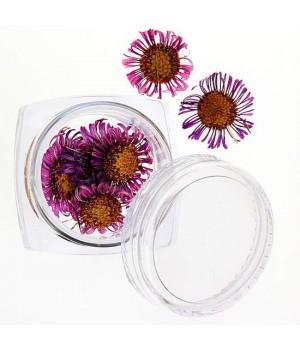 Сухоцветы для ногтей №32