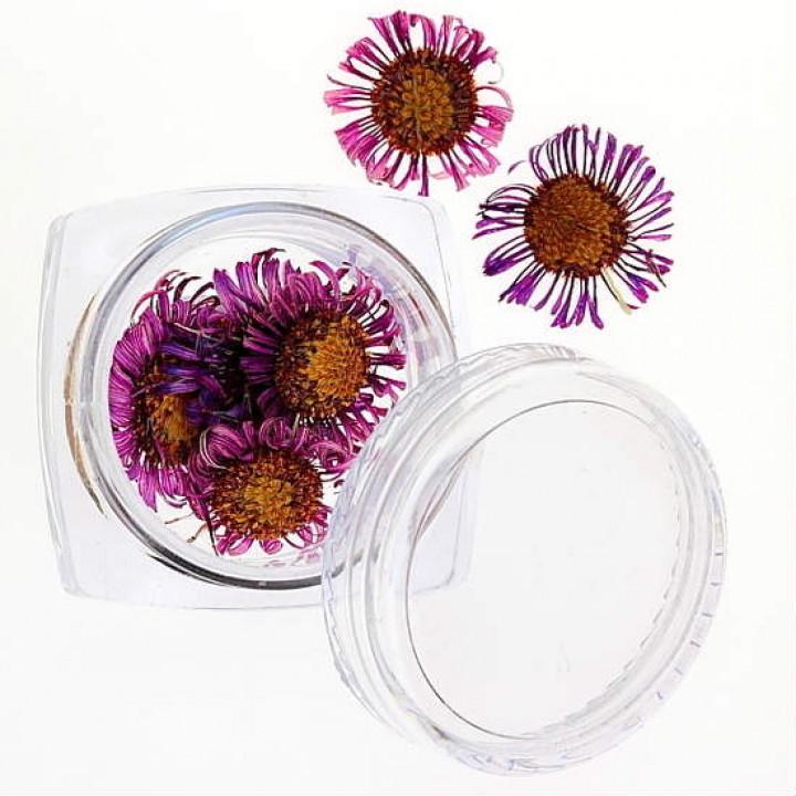 Сухоцветы для украшения и дизайна ногтей №32