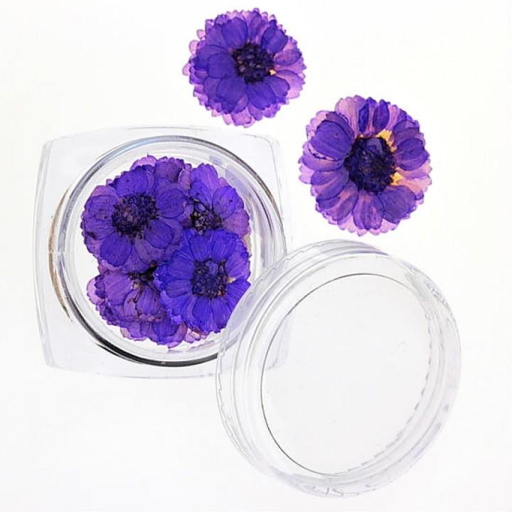 Сухоцветы для украшения и дизайна ногтей №36