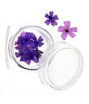 Сухоцветы для ногтей №44