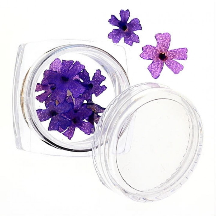 Сухоцветы для украшения и дизайна ногтей №44