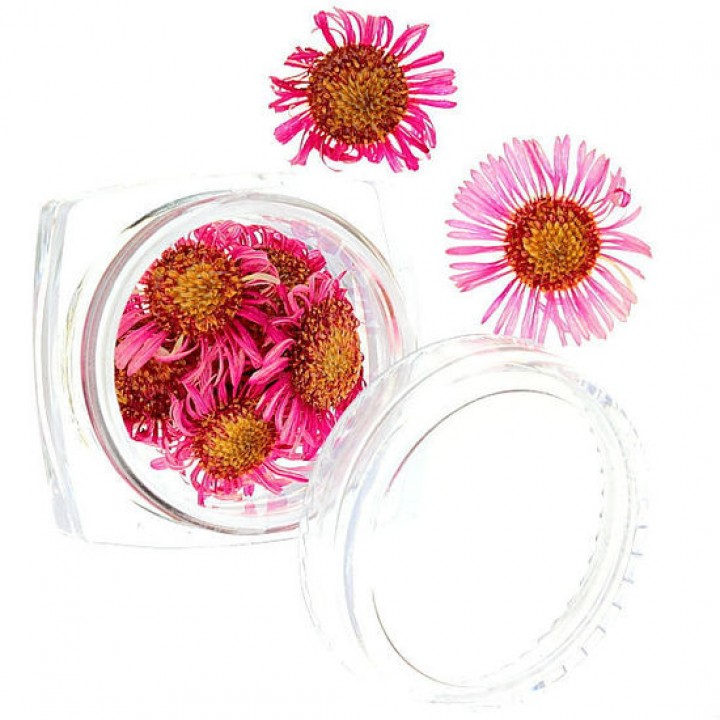 Сухоцветы для украшения и дизайна ногтей №52