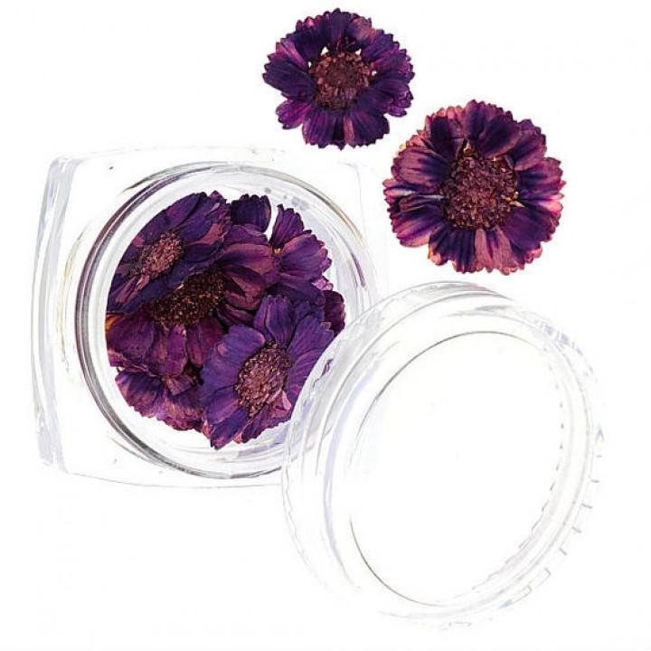Сухоцветы для украшения и дизайна ногтей №53