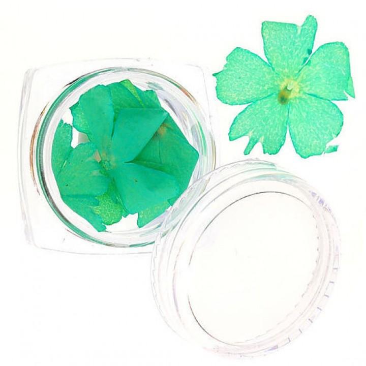 Сухоцветы для украшения и дизайна ногтей №59