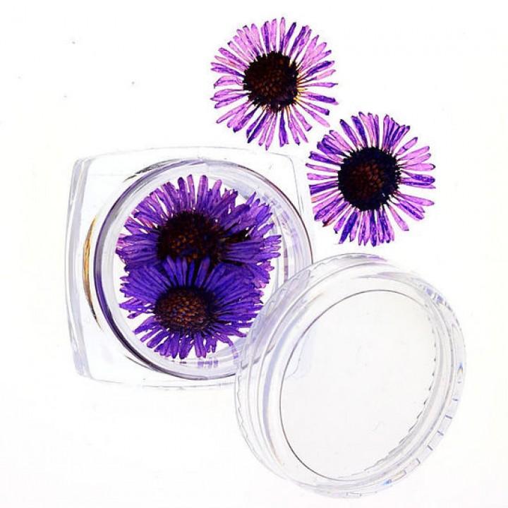 Сухоцветы для украшения и дизайна ногтей №63
