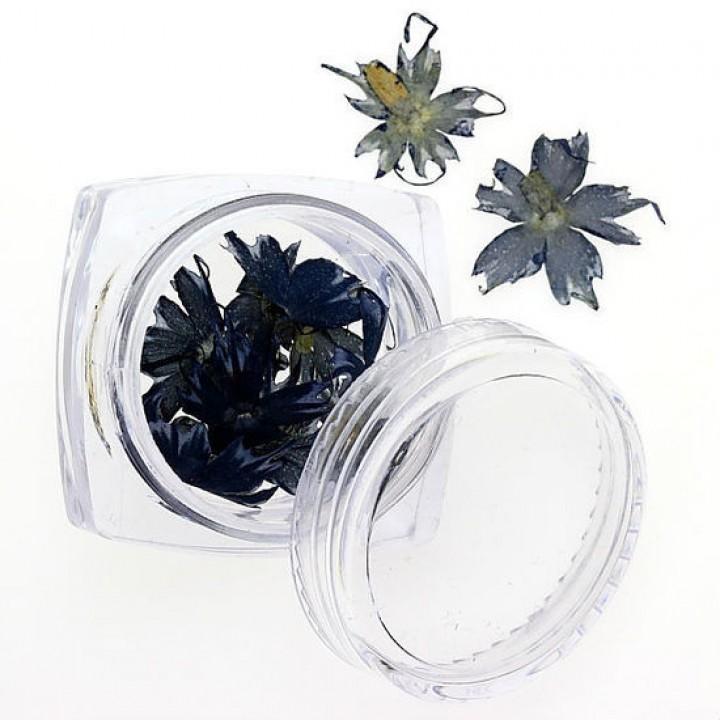 Сухоцветы для украшения и дизайна ногтей №78