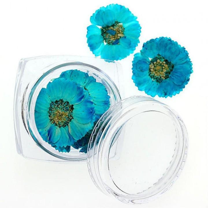 Сухоцветы для украшения и дизайна ногтей №80