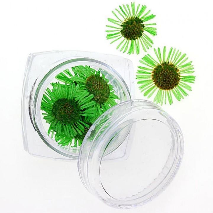 Сухоцветы для украшения и дизайна ногтей №87