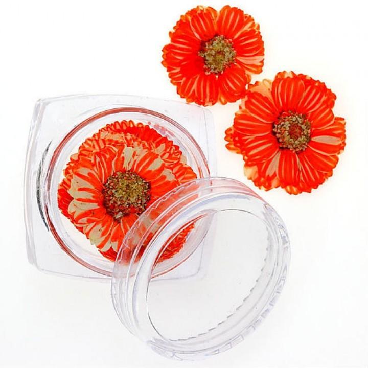 Сухоцветы для украшения и дизайна ногтей №93