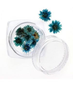Сухоцветы для ногтей №94