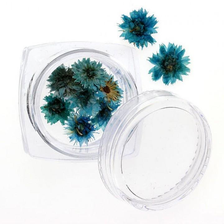 Сухоцветы для украшения и дизайна ногтей №94