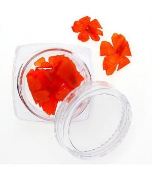 Сухоцветы для ногтей №95