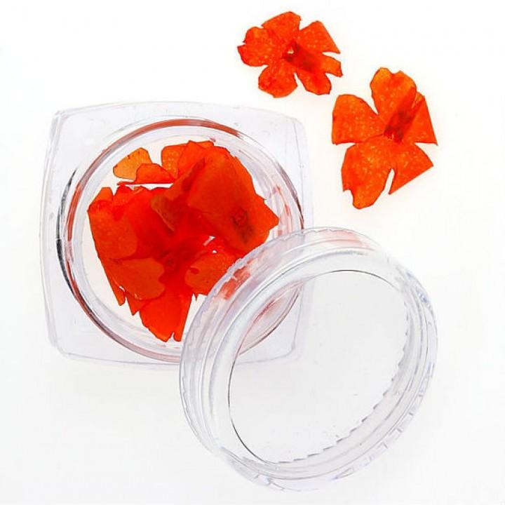Сухоцветы для украшения и дизайна ногтей №95