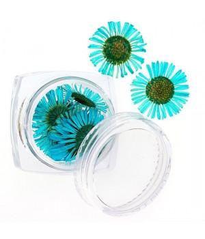 Сухоцветы для ногтей №104