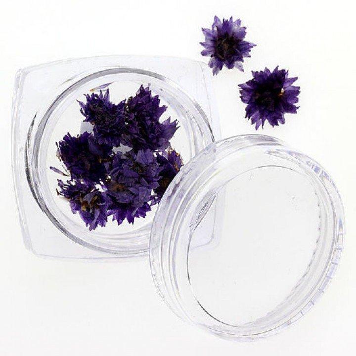 Сухоцветы для украшения и дизайна ногтей №108